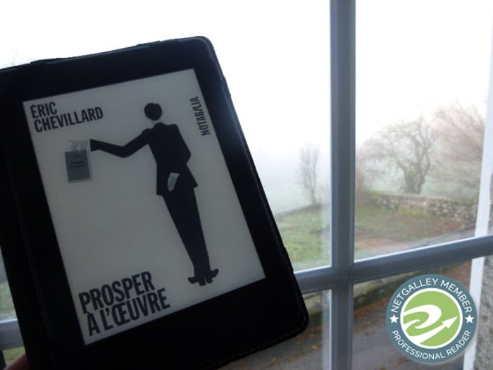Devant une fenêtre, une liseuse avec la couverture du livre d'Eric Chevillard, Prosper à l'oeuvre.