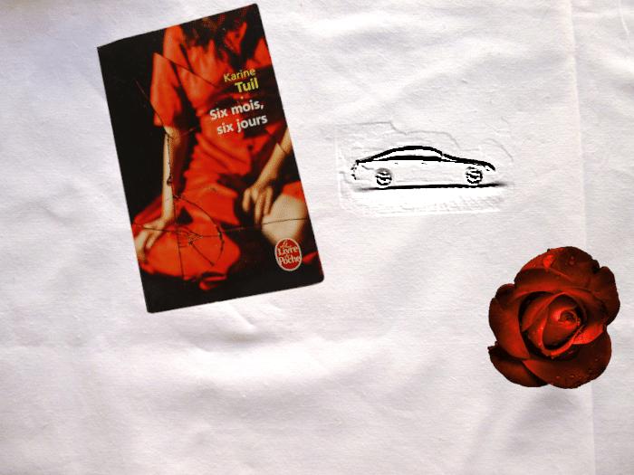 Livre de Karine Tuil, Six mois, six, jours, une voiture et une rose