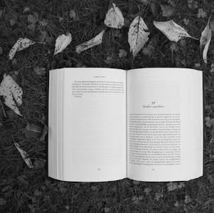 Livres ouverts sur un sol jonché de feuilles