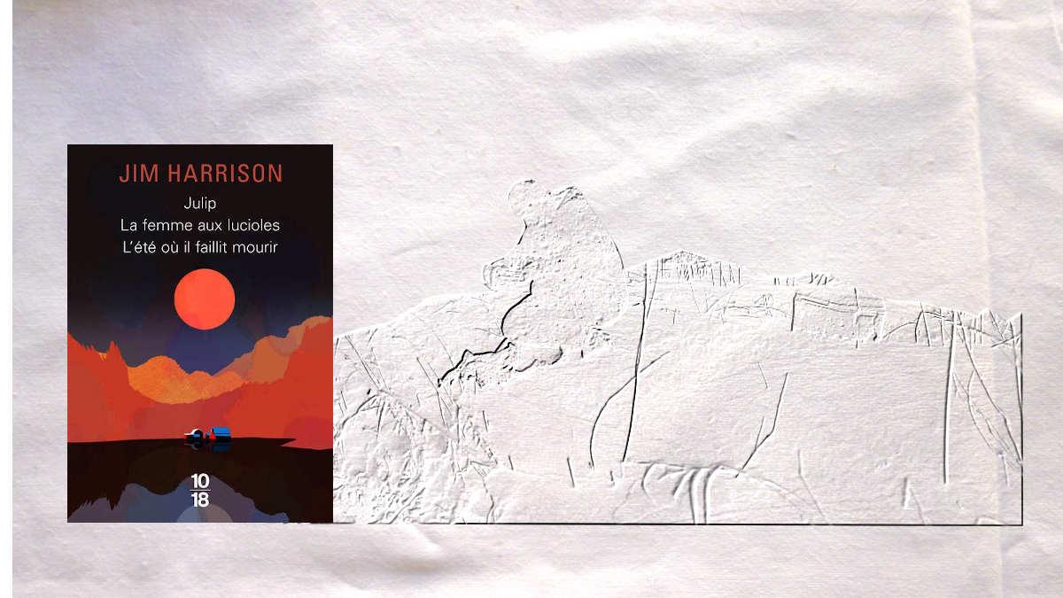 En arrière-plan, un homme au bord de l'eau, au premier plan, la couverture du livre de Jim Harrisson, Julip, La femme aux lucioles