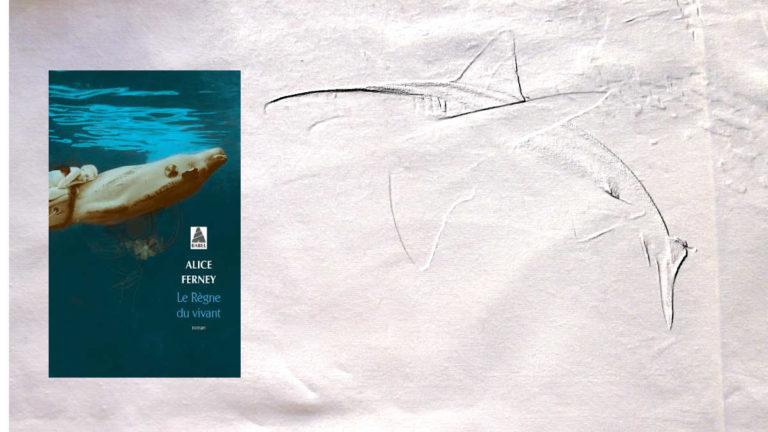 A l'arrière-plan, un requin, au premier plan, la couverture du livre d'Alice Ferney, Le règne du vivant