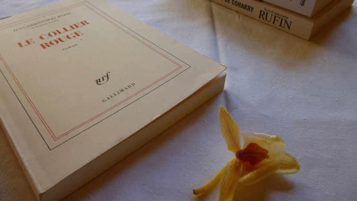 Livre de Jean-Christophe Rufin, Le collier rouge