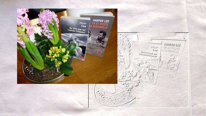 Les deux livre des Harper Lee, Ne tirez pas sur l'oiseau moqueur et Va et poste une sentinelle